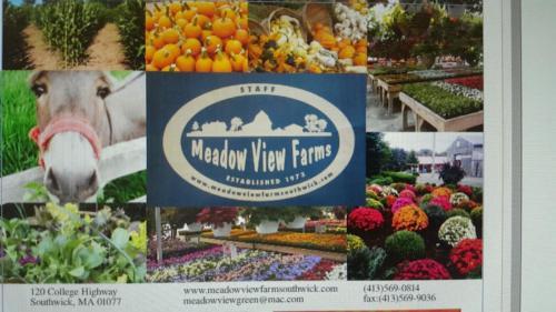 MVF-photos